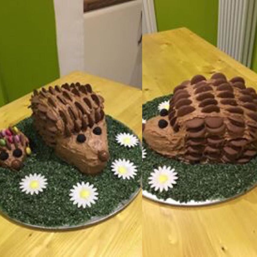 Fine A Really Cute Hedgehog Birthday Cake I Made Even The Grass And Funny Birthday Cards Online Inifodamsfinfo